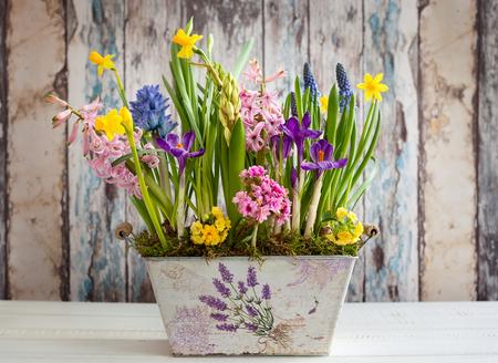 Świeże, piękne wiosenne kwiaty w doniczce vintage na drewnianym stole. Dekoracja wielkanocna do domu.