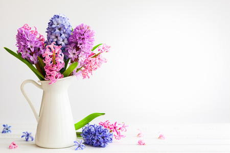 Flowers composition with lilac and pink hyacinths. Spring flowers in vase on white background. 스톡 콘텐츠