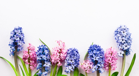 Flowers composition with lilac and pink hyacinths. Spring flowers on white background. Easter concept. Flat lay, top view. Stockfoto