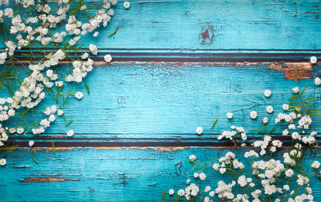 White flowers composition on blue vintage wooden background with copy space. Flat lay style, top view, minimal style.