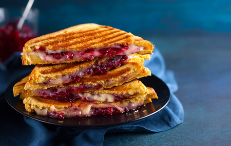 Grilled sandwiches with cheese, ham and cranberry chutney on plate. Perfectly idea for Christmas lunch. Stock Photo