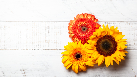 Beautiful yellow sunflowers and gerbera  on the white wooden background. Top view with copy space. Stock Photo
