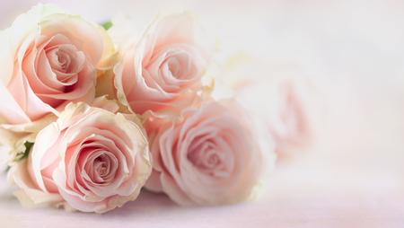 Festive still life with pink roses. Flower composition with roses. Soft focus. Stockfoto