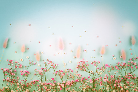 Spring floral composition made of fresh pink flowers on light pastel