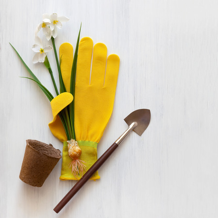 Gardening concept  with spring flowers, garden tools,work gloves and flower pots on wooden background. Flat lay, copy space. Stockfoto