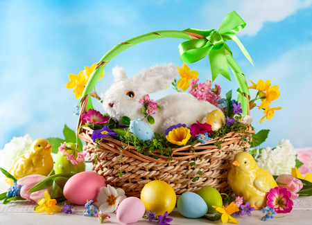 Easter composition with little white bunny in basket, chicks, spring flowers and colorful Easter eggs . Easter Card with copy space.
