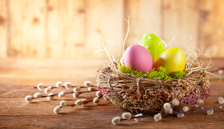 Easter composition with colorful Easter eggs in nest and branches of pussy willows on wooden background. Easter card with copy space.