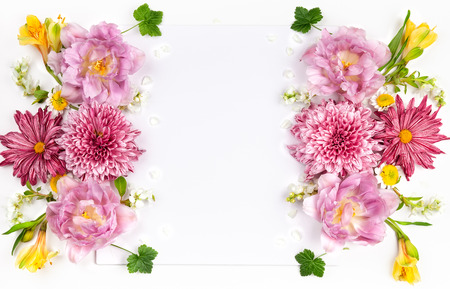 Beautiful pink flowers on white background. Summer floral concept. Flat lay, copy space.