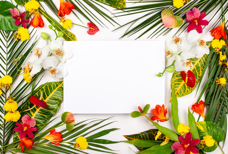 Composition with fresh tropical leaves and exotic flowers on white