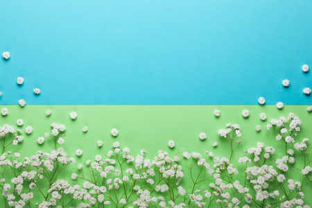 Flowers composition on green and blue Imagens