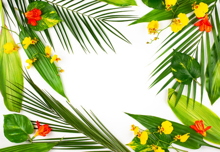Composition with fresh tropical leaves and exotic flowers on white background. Summer concept with flower and leaf pattern. Flat lay with copy space.