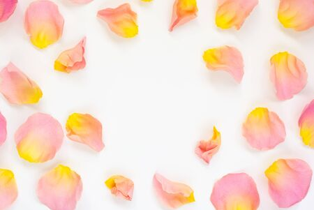 Beautiful fresh petals of pink rose . Festive floral background. Top view with copy space. Imagens - 126492094