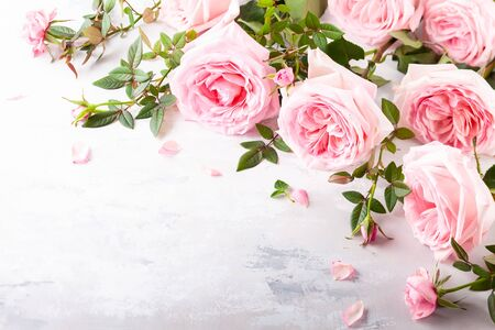 Beautiful fresh  pink roses flowers on vintage background. Festive floral background. Imagens - 126492098