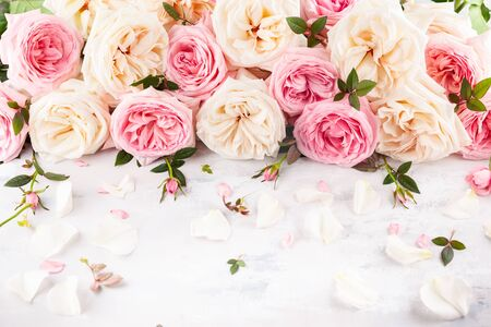 Beautiful fresh  pink and white roses on vintage background. Festive floral background. Imagens - 126492102