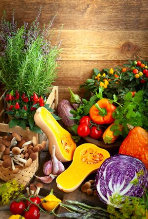 Assorted seasonal vegetables and fresh herbs on a rustic wooden table. Imagens
