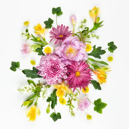 Beautiful pink flowers on white background. Flowers composition. Summer floral concept. Flat lay, copy space.