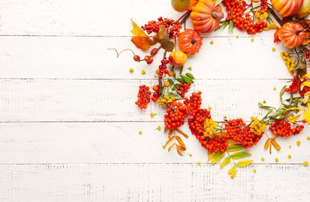 Autumn concept with pumpkins, flowers, autumn leaves and  rowan berries on a white rustic