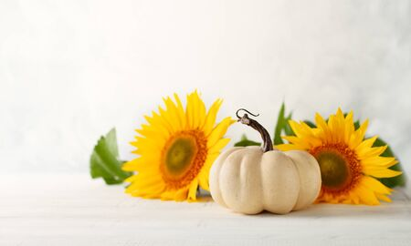 Autumn still life with sunflowers and white pumpkin.Autumn arrangement on a white wooden table.