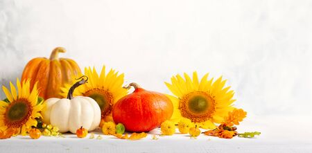 Beautiful autumn still life with sunflowers, red- yellow flowers, autumn leaves and white and orange pumpkins on wooden table, front view. Autumn concept with pumpkins and flowers. Imagens