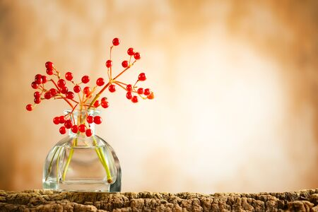 Beautiful autumn red berries in glass bottle on wood  at bokeh background, front view. Autumn still life with berries. Imagens