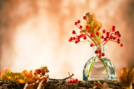 Beautiful autumn red berries and oak leaves in glass bottle on wood  at bokeh background, front view. Autumn still life with berries and leaves. Imagens