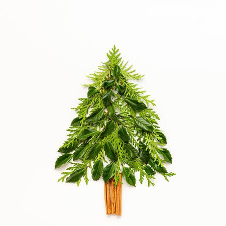 Christmas composition in shape of Christmas tree with branches of thuja, spruce and holly on white background. Merry christmas greeting card with empty space for holiday text. Flat lay