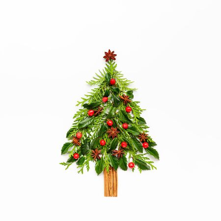 Christmas composition in shape of Christmas tree with branches of thuja, spruce and spices on white background. Merry christmas greeting card with empty space for holiday text. Flat lay