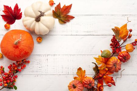 Festive autumn decor from pumpkins, berries and leaves on a white  wooden background. Concept of Thanksgiving day or Halloween. Flat lay autumn composition with copy space. Imagens