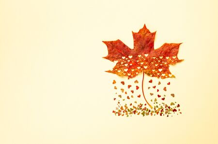 Creative Autumn concept with heart cut from natural red maple leaf. Flat lay, copy space. Imagens