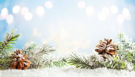 Christmas fir tree branches with pine cones on blurred blue  background. Christmas and Winter concept.