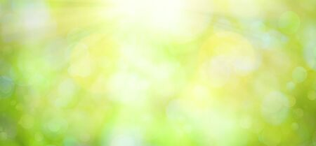 Bright green spring or summer blurred background.Easter natural background with copy space. 스톡 콘텐츠