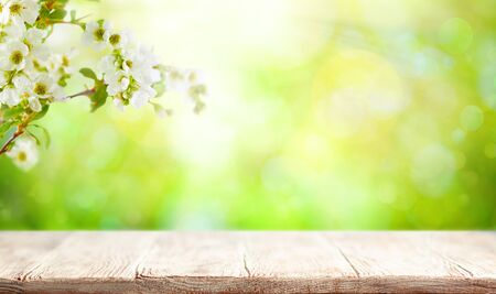 Wooden table and blurred green spring or summer background with flower blossom tree branches. Easter natural background with copy space. 스톡 콘텐츠