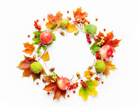 Autumn wreath made of apple, leaves, berries on white background. Autumn composition for Thanksgiving day or for other holidays. Flat lay, copy space. Archivio Fotografico