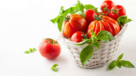 Assorted fresh ripe tomatoes and basil in basket. Healthy food concept. Clean eating