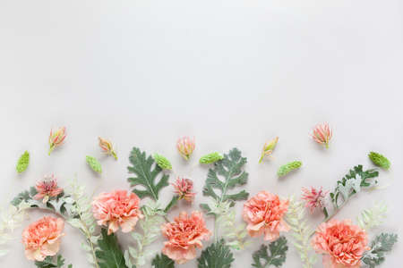 Flowers composition made of coral carnation and silver-green leaves of Senecio cineraria on pastel gray background. Nature concept, copy space, flat lay. Standard-Bild