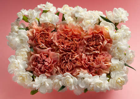 Festive flowers frame made of white and coral carnations on pastel pink background. Flat lay, top view.