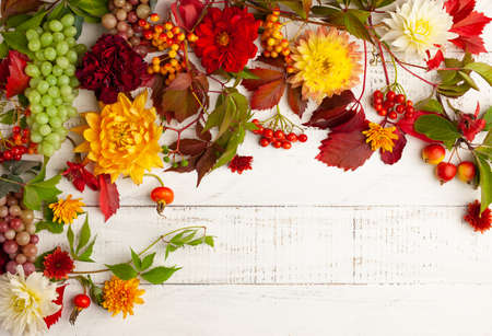 Autumn composition with flowers, leaves and berries on white wooden table. Flat lay, copy space. Concept of fall harvest or Thanksgiving day.