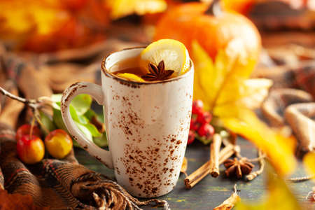 Autumn or winter spice tea in mug with seasonal fruits, berries, pumpkin and leaves on wooden table. 写真素材