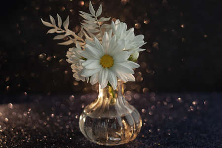 Beautiful white flowers in glass vase on dark background with festive bokeh. Autumn bouquet chrysanthemums 写真素材