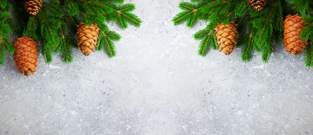 Christmas or New Year background with green fir branches and cones. Winter concept, top view, copy space 免版税图像
