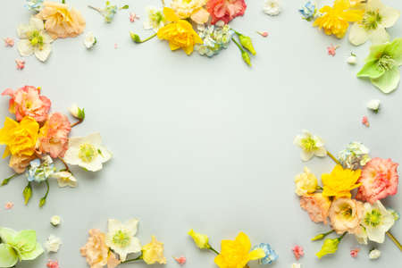 Holiday concept with spring flowers on pastel background with copy space for text. Flat lay pattern.