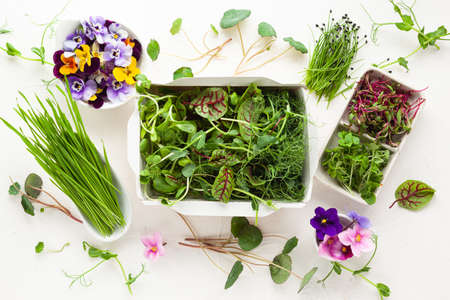 Different types of organic microgreens sprouts and edible flowers. Vegetarian, clean and healthy eating concept. Seed germination at home. 免版税图像