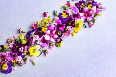 Background of fresh multicolored flowers 免版税图像