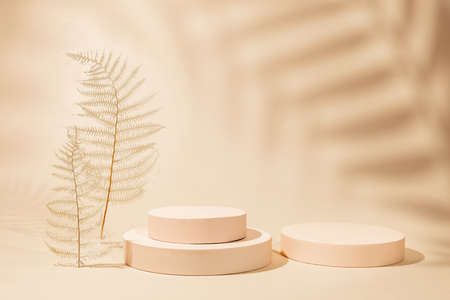 Abstract background with geometric podiums or pedestals for products presentation or exhibitions. Empty cylinder podiums on pastel backdrop. Shadows of palm leaves on wall 免版税图像