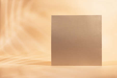 Gold Paper sheet or blank card with realistic leaf shadows.