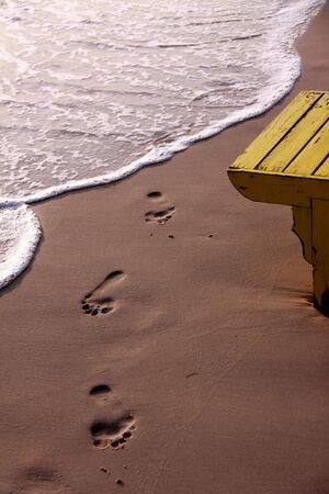 spoor: Footmark on the Beach