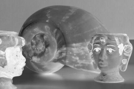 metaphysics: Shell Stock Photo