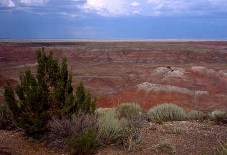 Painted Desert, 아리조나