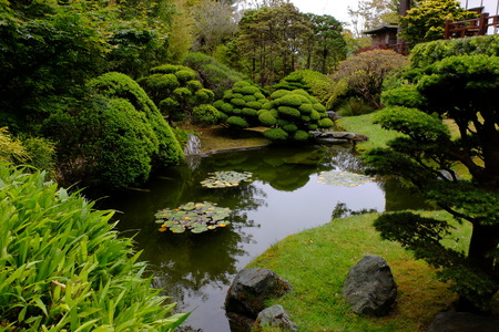 Japanse tuin, San Francisco Stockfoto