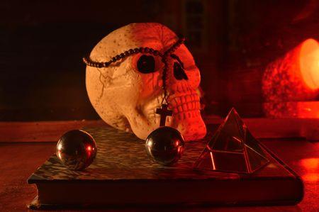 Cranio Archivio Fotografico - 81034559